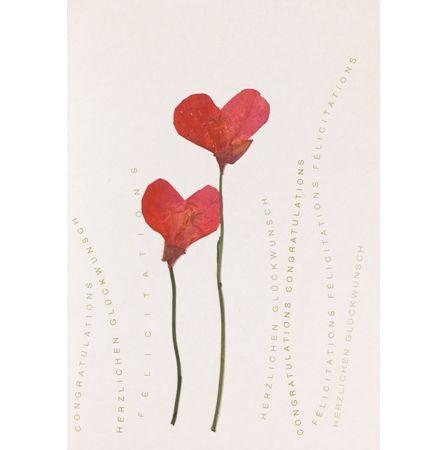 Herzblütenkarte Mohnblüten